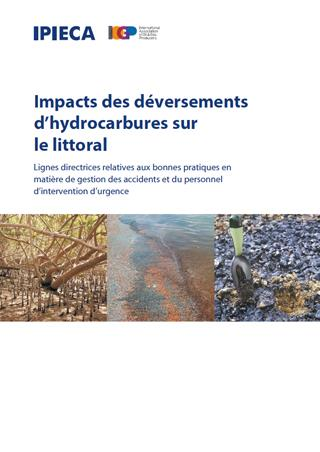 Impacts_on_shorelines_FR_cover.jpg