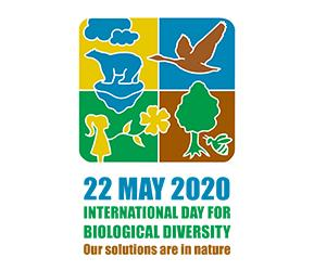 Biological_Diversity_Day_2020.png